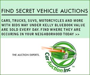 Car Auction Inc